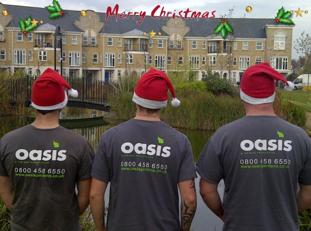 Merry Christmas from Oasis Gardens Limited