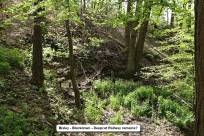 1 Trenches Walk Deepcut - Alan Meeks (6)