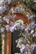 Loseley Park - Claire Funnell (1)