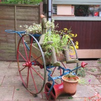 Rural Life - Josephine Hawkins (3)