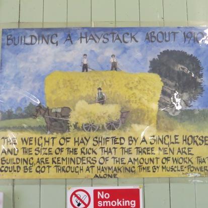 Rural Life - Josephine Hawkins (52)