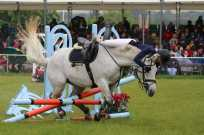 Surrey County Show 2014 - Alan Meeks (17)