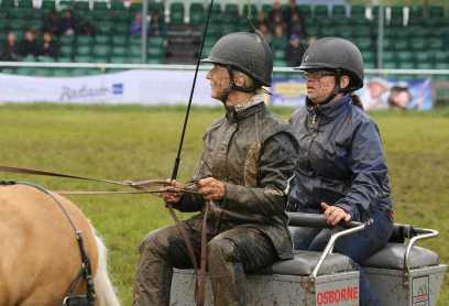 Surrey County Show 2014 - Alan Meeks (72)