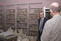 Michael Gove visit to the Surrey Heath Archaeology & Heritage Trust Centre - Mike Hillman (15)
