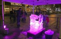 Ice sculptures - Alan Meeks 16