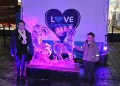 Ice sculptures - Alan Meeks 20