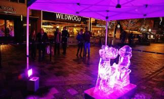 Ice sculptures - Alan Meeks 23