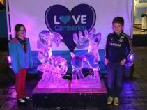 Ice sculptures - Alan Meeks 27
