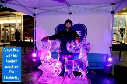 Ice sculptures - Alan Meeks 29