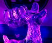 Ice sculptures - Alan Meeks 32