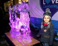 Ice sculptures - Alan Meeks 34