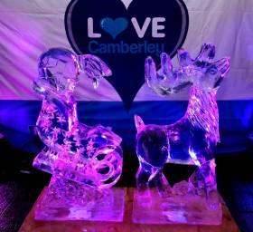 Ice sculptures - Alan Meeks 36
