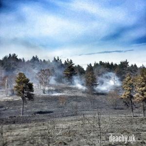 Heath Fires - Paul Deach