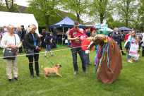 Lightwater Fete 19