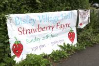 Bisley Strawberry Fayre 2015 1