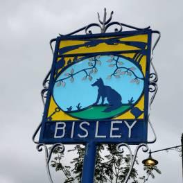 Bisley Strawberry Fayre 2015 28