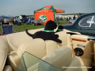 Wings and Wheels 2015 - Rolf Evans - Surrey Residents Network 194