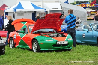 Wings and Wheels 2015 - Rolf Evans - Surrey Residents Network 4