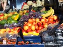 Camberley Food and Artisan Market - Mimosa - Paul Deach - 24