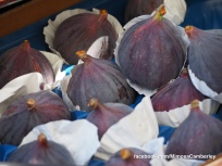 Camberley Food and Artisan Market - Mimosa - Paul Deach - 26