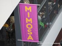 Camberley Food and Artisan Market - Mimosa - Paul Deach - 42