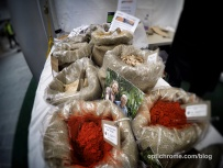 Woking Food Festival 2015 - Optichrome 27