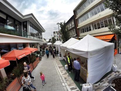 Woking Food Festival 2015 - Optichrome 28