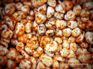 Woking Food Festival 2015 - Optichrome 47