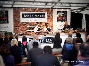 Woking Food Festival 2015 - Optichrome 55