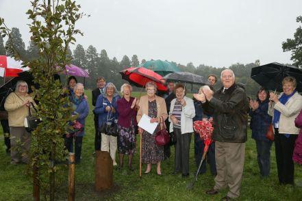 WI Tree Planting - Alan Meeks 2