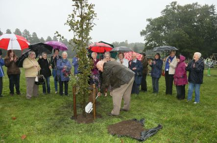 WI Tree Planting - Alan Meeks 3