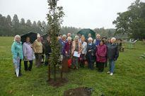 WI Tree Planting - Alan Meeks 4