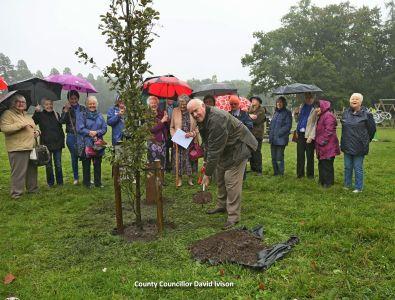 WI Tree Planting - Alan Meeks 8