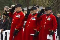 Canadian Remembrance _ Brookwood 2015 - Mike Hillman 46
