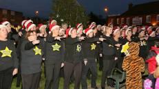 Frimley Christmas Tree 12