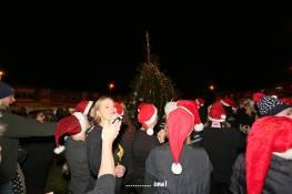 Frimley Christmas Tree 26
