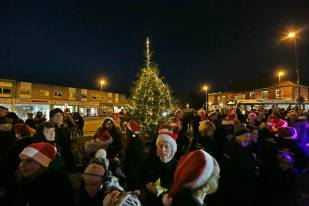 Frimley Christmas Tree 27