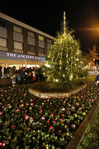 Frimley Christmas Tree 45