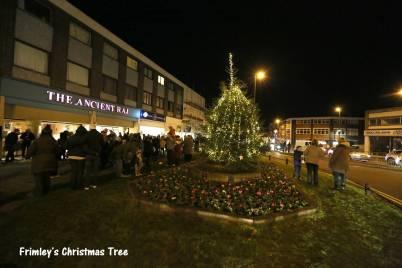 Frimley Christmas Tree 46