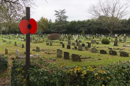 Windlesham Remembrance 2015 No 37