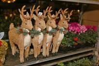 Chobham Christmas Christmas Extravaganza 9