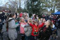 Heatherside Christmas Tree 25