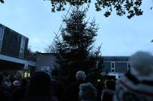 Heatherside Christmas Tree 31
