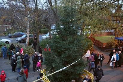 Heatherside Christmas Tree 34