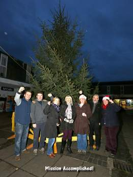 Heatherside Christmas Tree 38