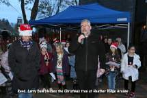 Heatherside Christmas Tree 43