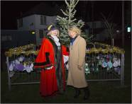 Windlesham Christmas Tree Lights 2015 - Mike Hillman 22