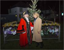 Windlesham Christmas Tree Lights 2015 - Mike Hillman 22