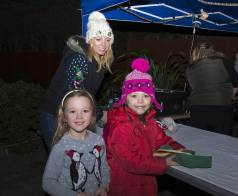 Windlesham Christmas Tree Lights 2015 - Mike Hillman 9