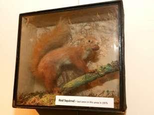 Natural History Society March 2016 9